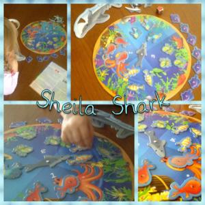 Die bunten Farben und unterschiedlichen Fischsorten sind eine Augenweide