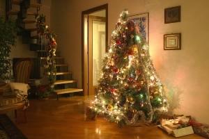 Bildrechte: Flickr My Christmas Conan CC BY 2.0 Bestimmte Rechte vorbehalten